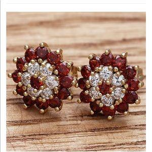 Beautiful 4.5 KT. Ruby & 14KT. Gold Earrings